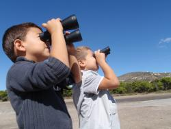 International birdwatching day, Schinias, Greece (photo Stam Zogaris)