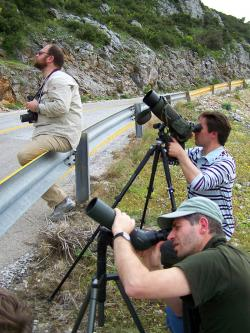 Birdwatching on Hymittos, Greece (photo Stam Zogaris)